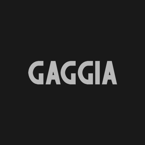 Serwis ekspresów do kawy Gaggia